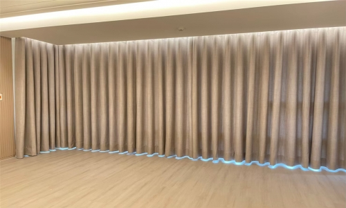 蛇型簾 (9)